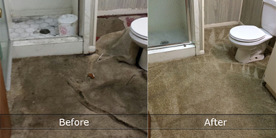 Eco-Friendly Water Damage Restoration Ashwood