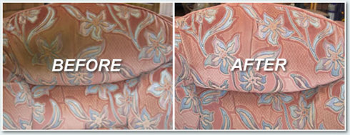 Eco-friendly upholstery cleaning Moggs Creek
