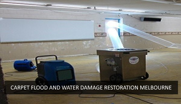 Carpet Flood and Water Damage Restoration Reservoir