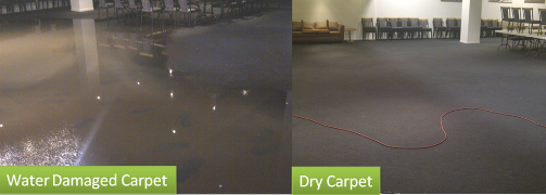 Water Damaged Carpet Repair Brookfield