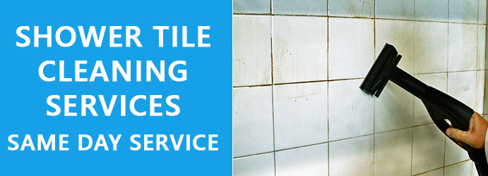 Shower Tile Cleaning Tarcombe