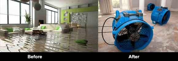 Carpet Flood and Water Damage Restoration Berwick