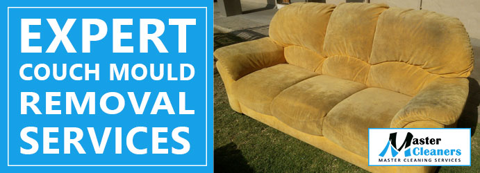 DIY For Couch Mould Removal
