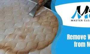 Remove Wine Stains From Mattress
